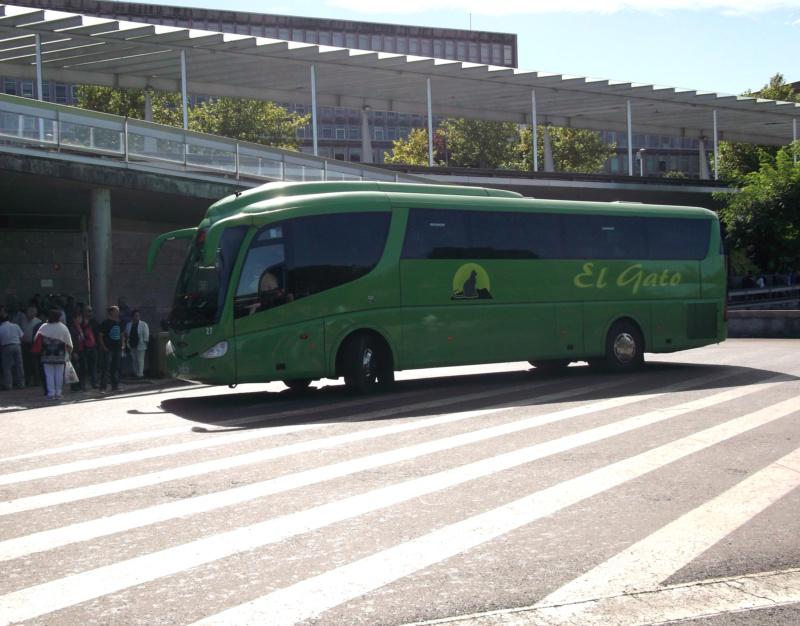 El Gato Scania22