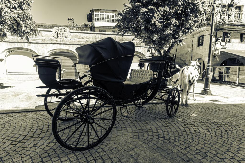 Sólo en blanco y negro Img_2013