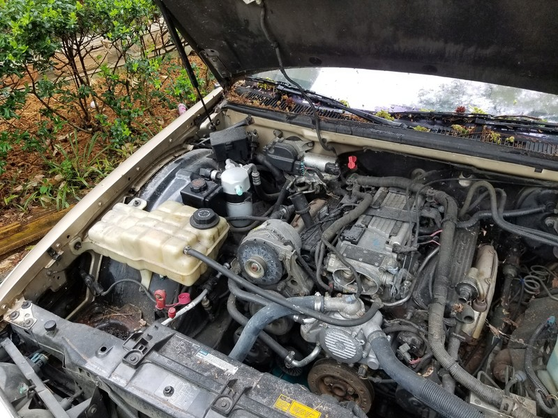 1994 RMW Sandstone/Gold parts car 20180431