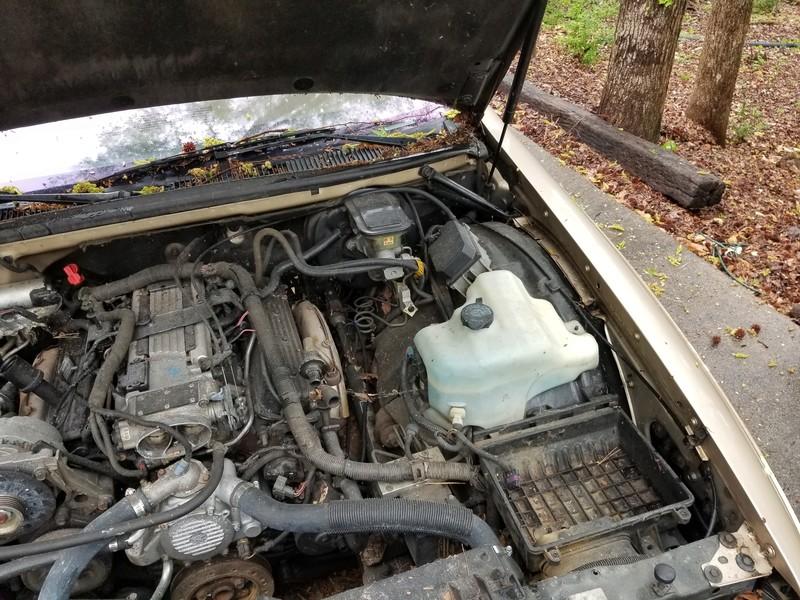 1994 RMW Sandstone/Gold parts car 20180432