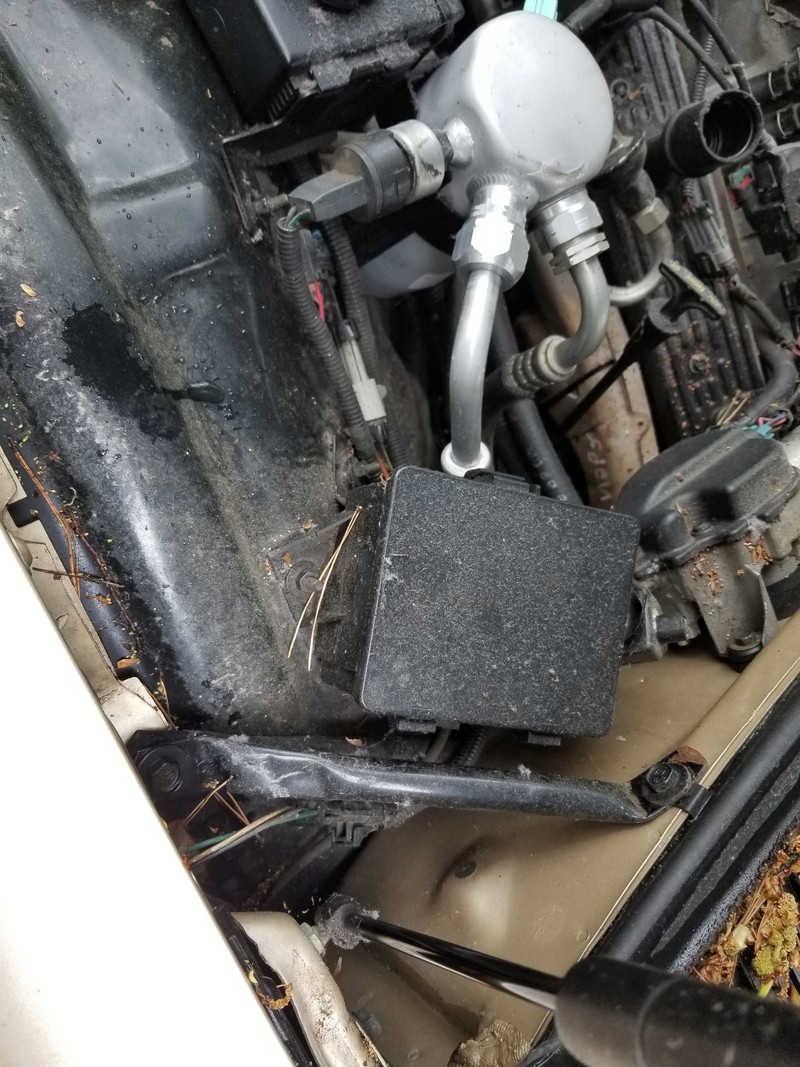 1994 RMW Sandstone/Gold parts car 20180435