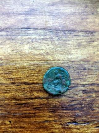 une grecque antique Seleukid? Img_2423