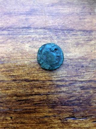 une grecque antique Seleukid? Img_2424