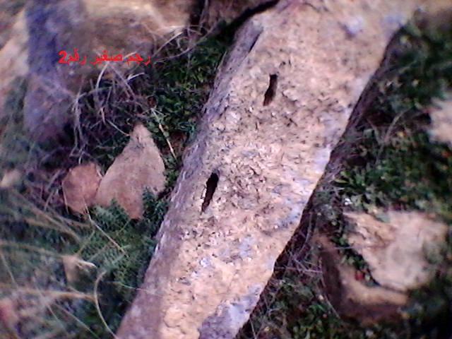 خريطة اجران على صخرة ثابتة Dsc_0033