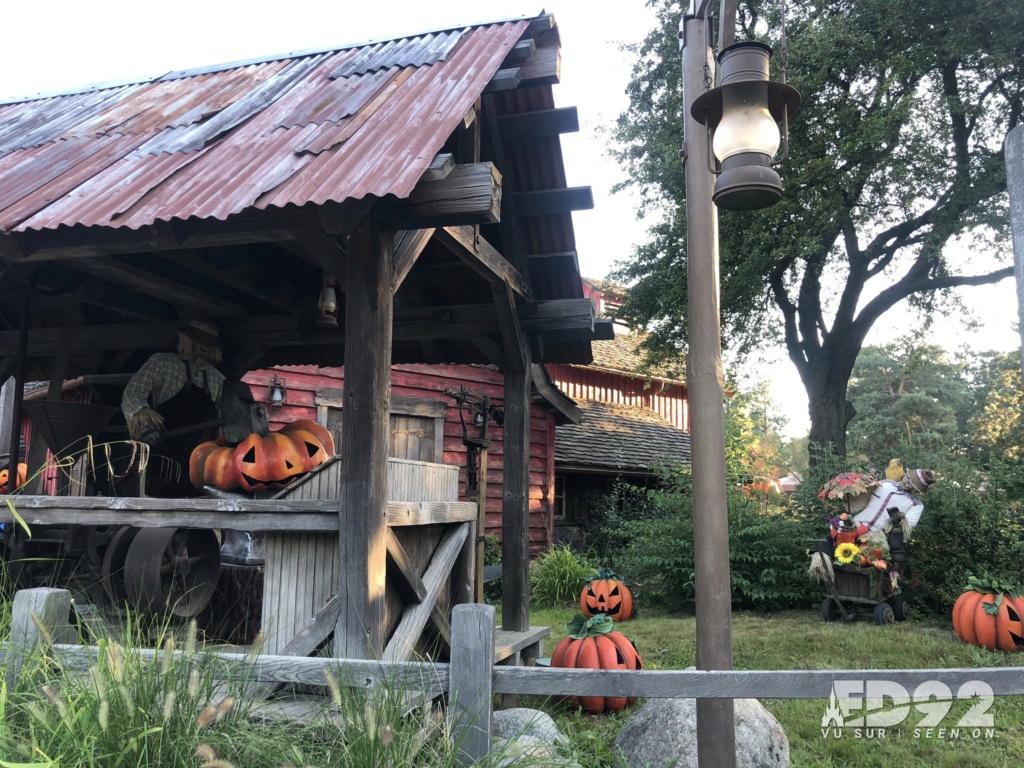 2021 - Festival Halloweem Disney E-qfyc10