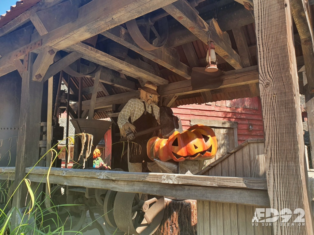 2021 - Festival Halloweem Disney E-rrdc10