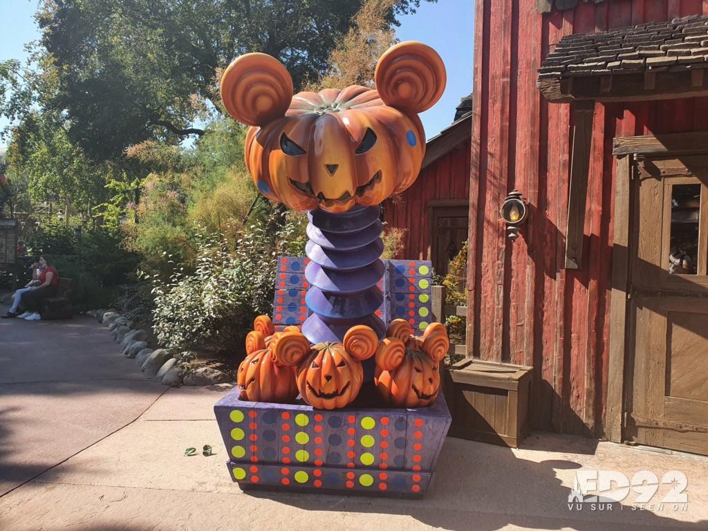 2021 - Festival Halloweem Disney E-rrdc13