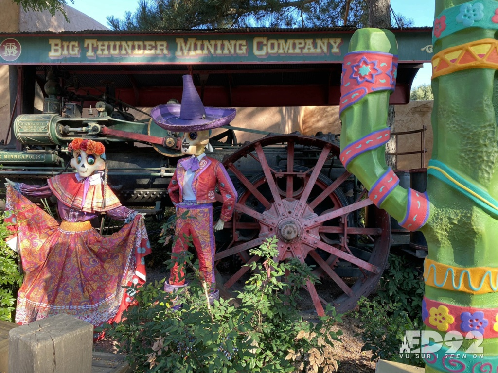 2021 - Festival Halloweem Disney E-wdq411