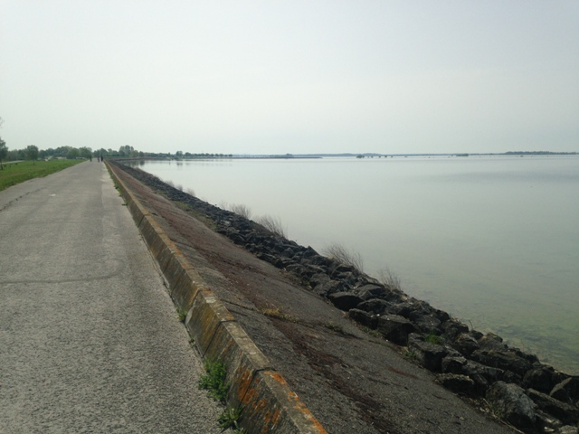 Fête de la Rando au Lac du Der (51) - Dim 3/05/2020 - ANNULÉ Img_2611