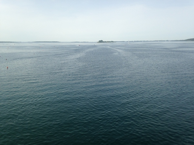 Fête de la Rando au Lac du Der (51) - Dim 3/05/2020 - ANNULÉ Img_2614