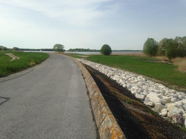 Fête de la Rando au Lac du Der (51) - Dim 3/05/2020 - ANNULÉ Img_2618