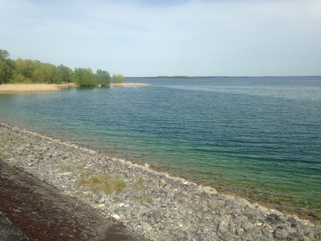 Fête de la Rando au Lac du Der (51) - Dim 3/05/2020 - ANNULÉ Img_2620