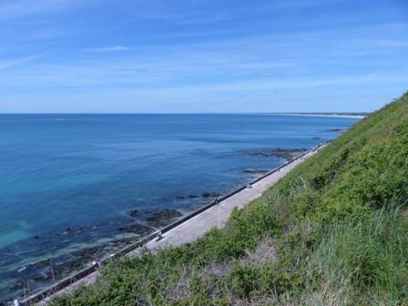 Randonnée Bleue & Verte - Dim 12/05/19 - Donville (50)-44 Km P1070728