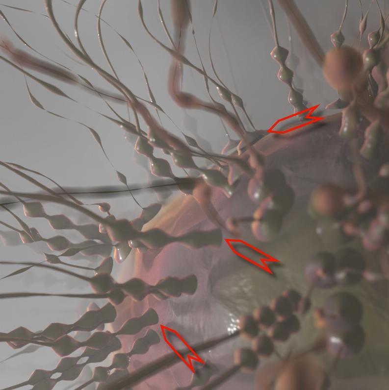 [ CINEMA4D ] Créez un Virus (Générateur de Volume / Mailleur de Volume + Extrusion Matricielle) C4D r20 Triple10