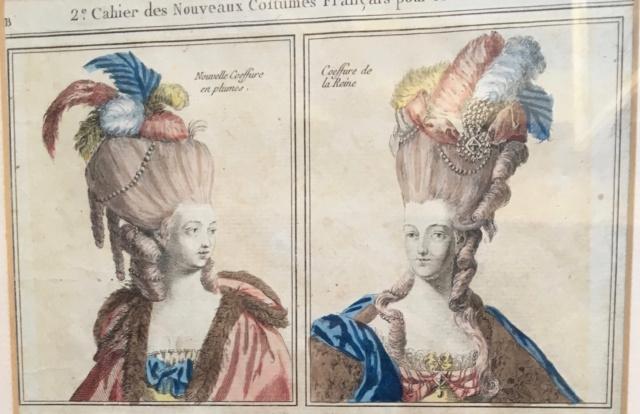 Plumes et Plumassiers au XVIIIe siècle - Page 2 Img_1111