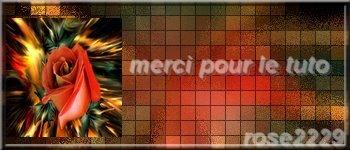 """N °  41 PFS """" Fond Bannière """" :"""" Effet Mosaïque"""" Exerc168"""