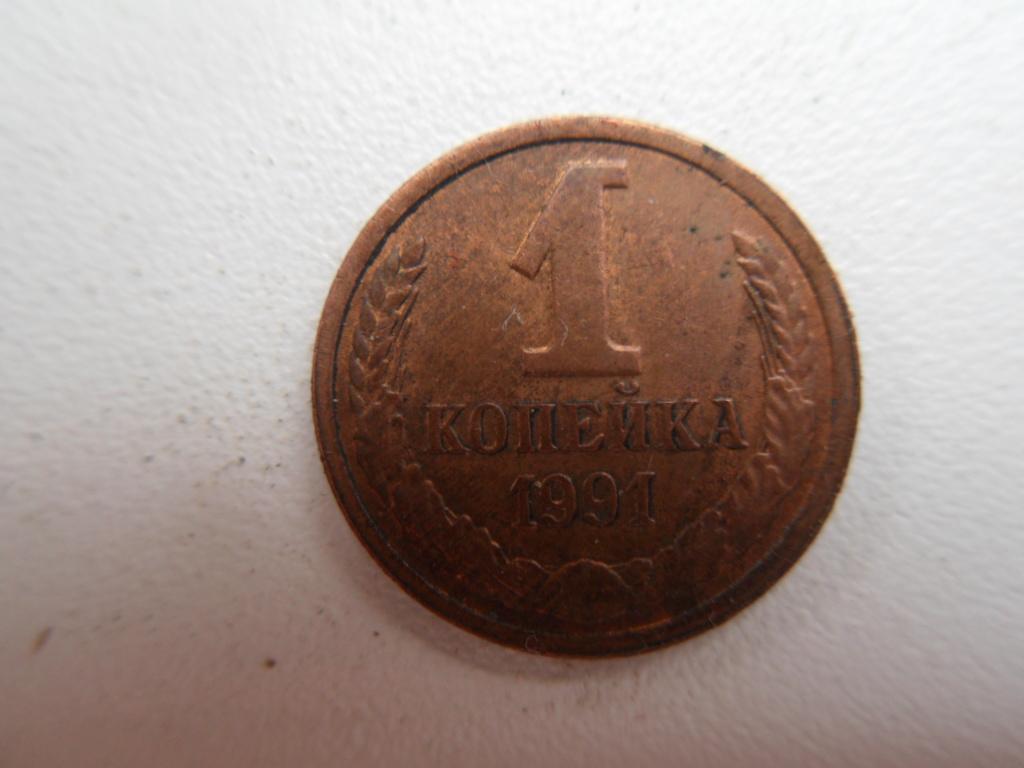 1 копейка 1991 Sdc12911