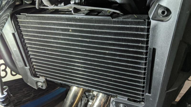 Chuches de Aliexpress montadas... protector radiador, pedal freno y alza cúpula Img_2028