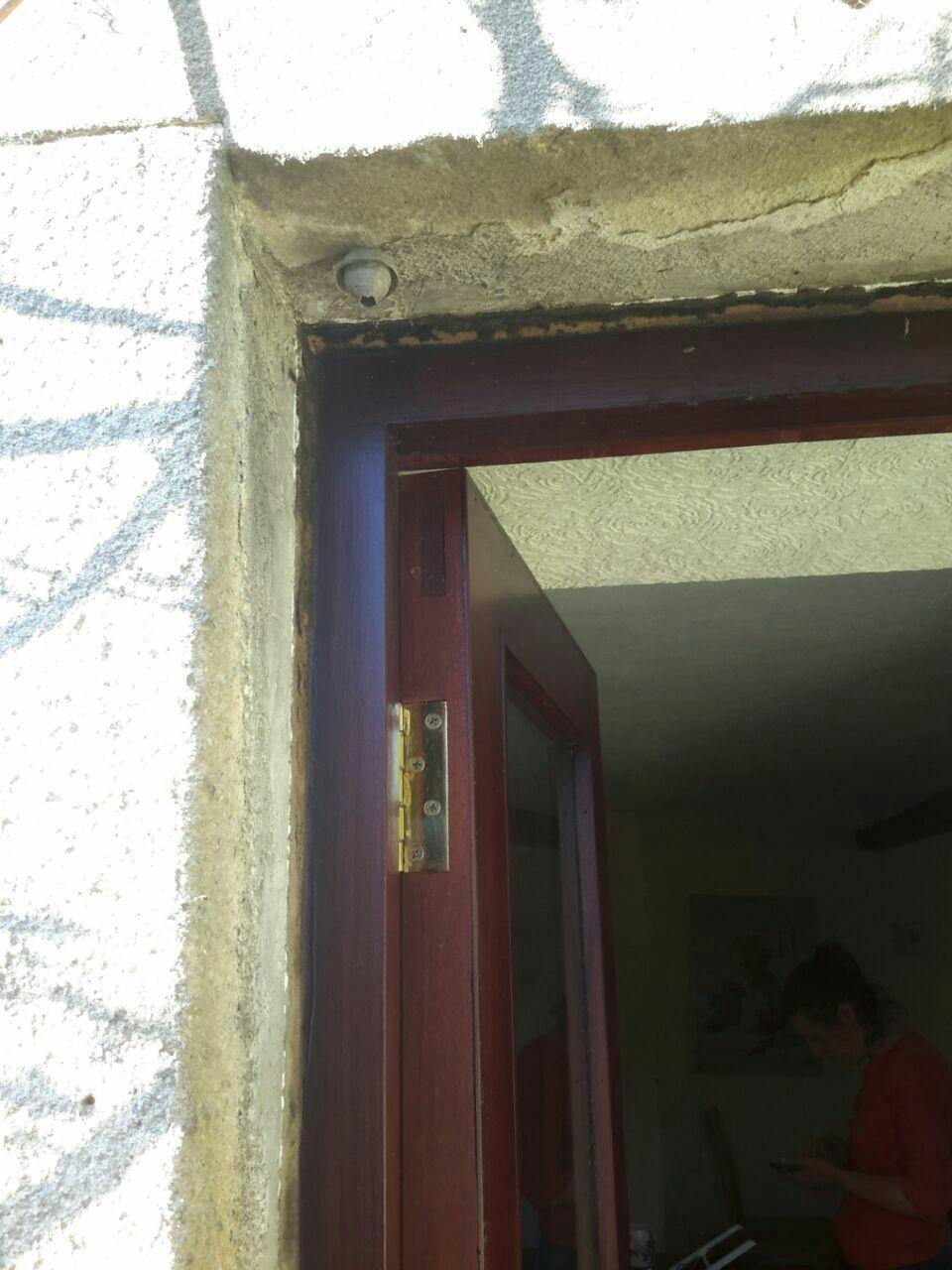 Déplacement d'un petit nid de guêpe Guepe210
