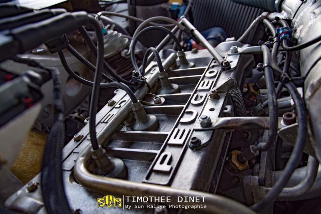 205 TURBO 16 groupe B client 11966710