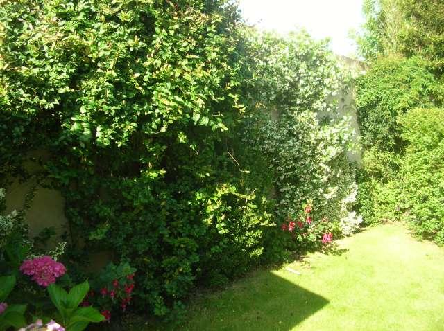 Un Jardin à St Malo juillet 2007 Dscn7151