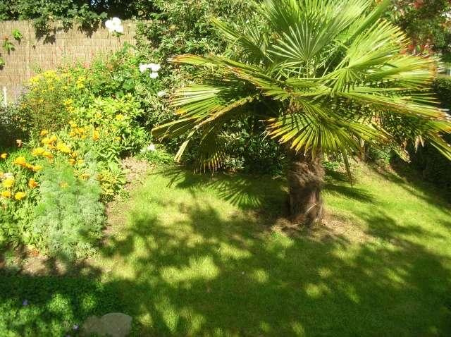 Un Jardin à St Malo juillet 2007 Dscn7160