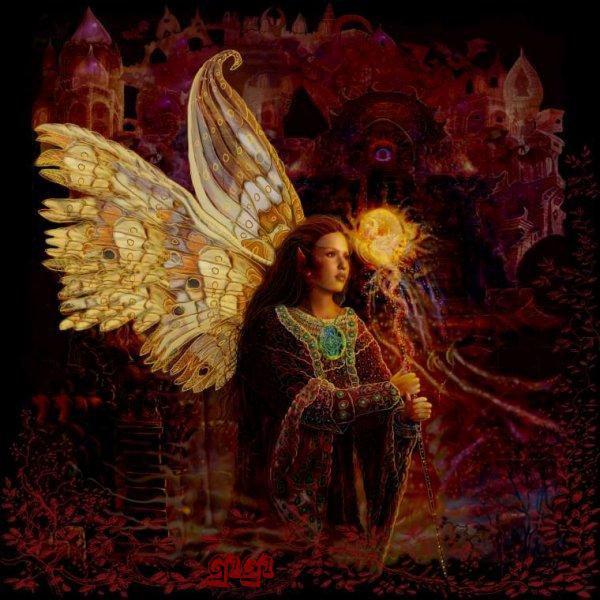 Le Paradis des Anges - Portail 28434710