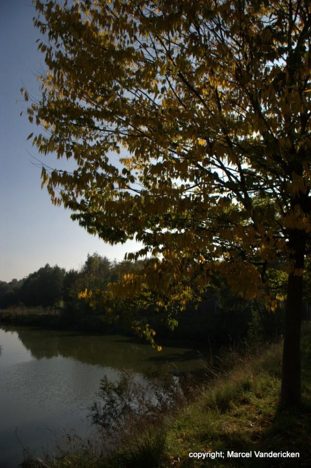 L'automne Sg1l1038