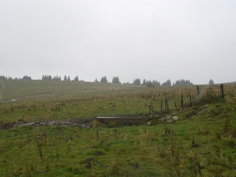 Le Cézallier en Octobre et Novembre 2010 Cimg7917