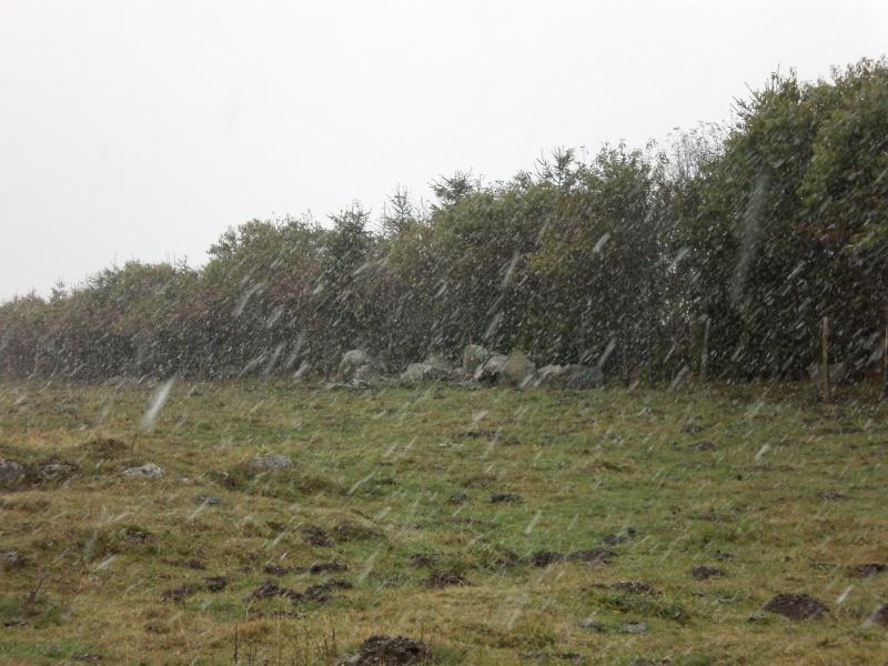 Le Cézallier en Octobre et Novembre 2010 Cimg7918