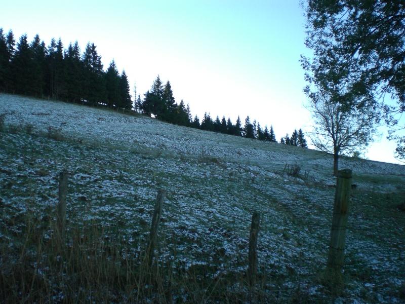 Le Cézallier en Octobre et Novembre 2010 Cimg8024