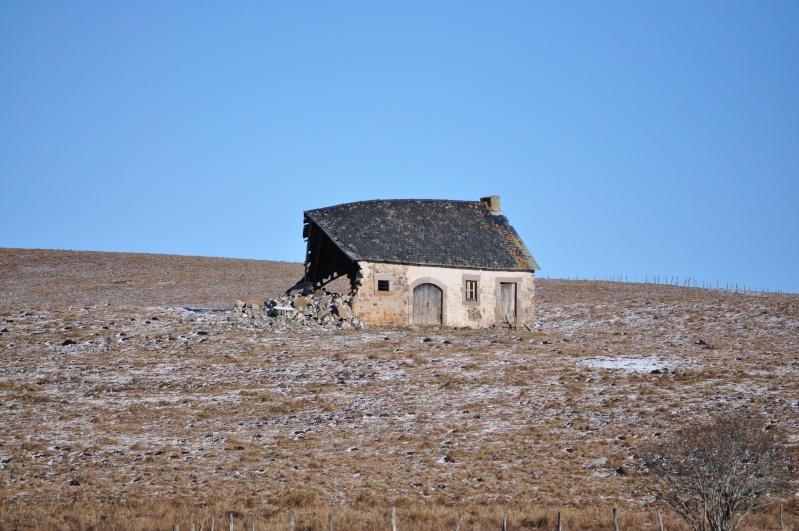 Février 2011 du coté d'Allanche Dsc_0728