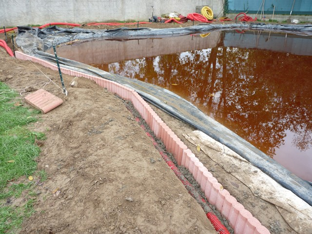 Mon bassin Bassin15