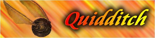 [BDE] Archivage panneau Quidditch Quiddi10