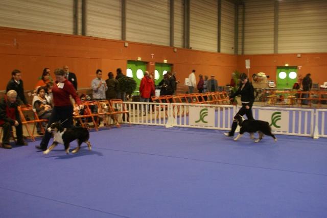 Expo de Nantes 27 et 28 octobre 2007 - Page 2 Dsc03100