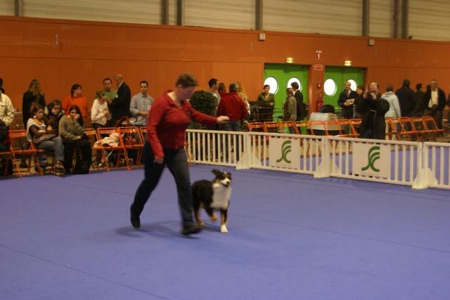 Expo de Nantes 27 et 28 octobre 2007 - Page 2 Dsc03695