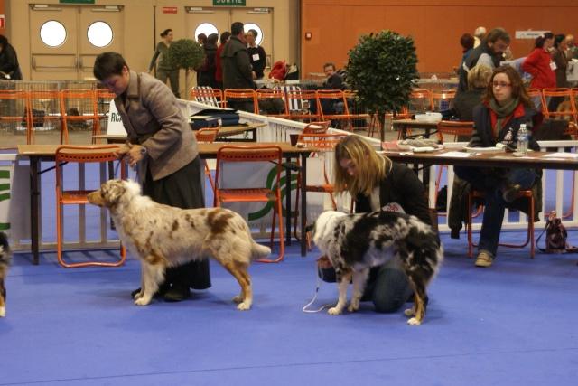Expo de Nantes 27 et 28 octobre 2007 - Page 2 Dsc03710