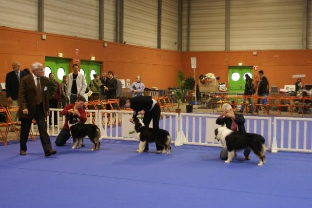 Expo de Nantes 27 et 28 octobre 2007 - Page 2 Dsc03712