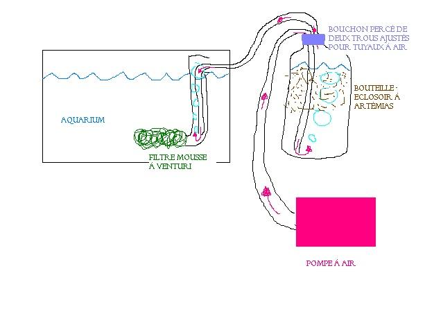pompe à air pour artémia + Filtre mousse System10