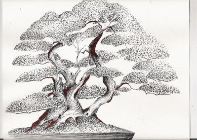 dessins Dessin26