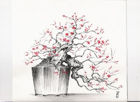 dessins Dessin34