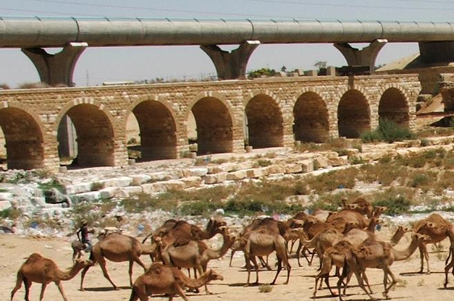 ISRAEL DU NORD AU SUD SUIVEZ-MOI 110