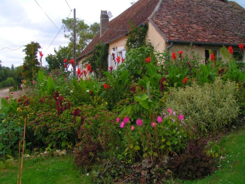 quelques photos de mon jardin - Page 2 Ete_2038