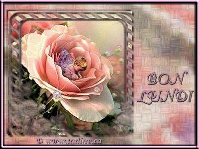 bonjour - Page 19 08120110