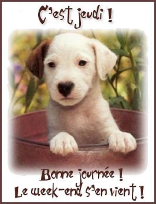 bonjour - Page 18 Naloqr10