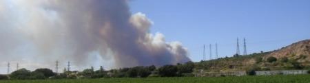 forum frontignan, garrigue en feu