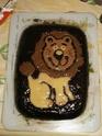 lion 100_1111