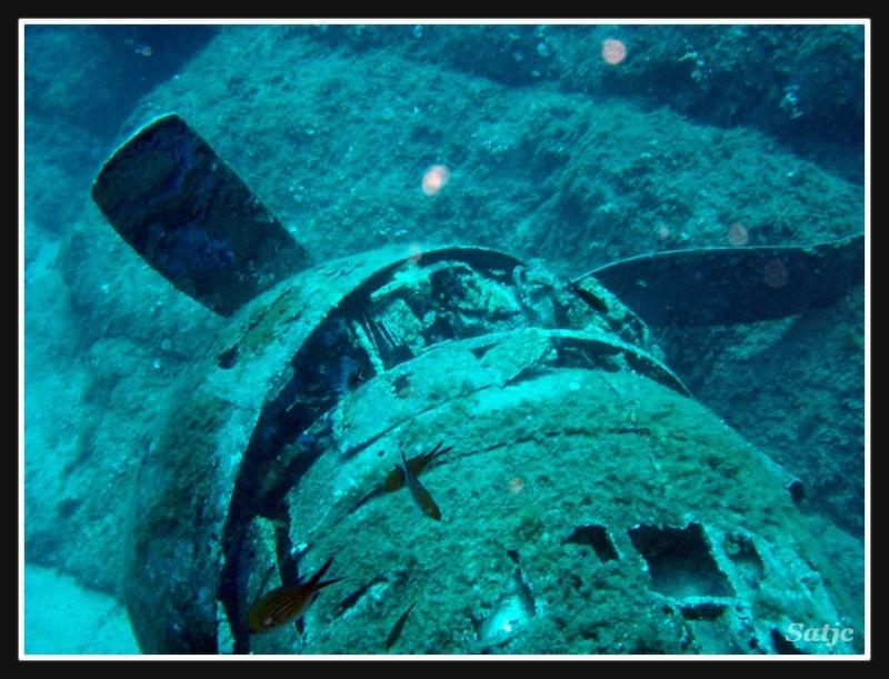 Un B-17 comme vous ne l'avez jamais vu Corse_16