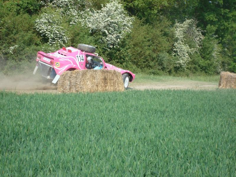 buggy - photos buggy Rose n° 114 COET/DUCOS Dsc03818