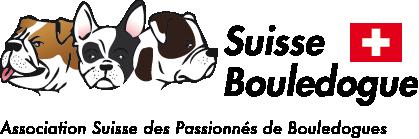 Suisse-Bouledogue